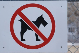 "Obeying all signs...""No Schnauzers Allowed"". Guess I'm allowed at this location."